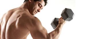 building arm muscles