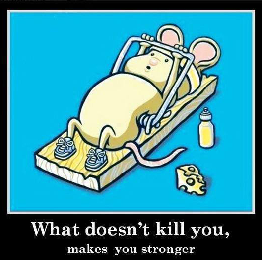 What doesn't kills you makes you stronger