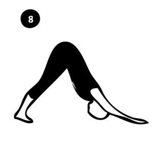 8-downward dog pose