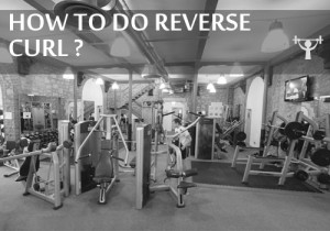 how to do reverse curl