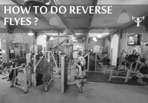 how to do reverse flyes