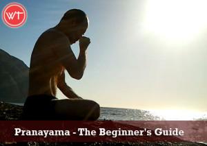 pranayama-the beginner's guide