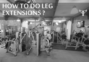 how to do seated machine leg extensions