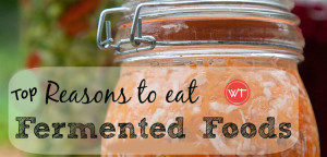 fermented foods for good health