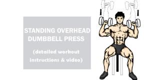 Standing Overhead Dumbbell Press