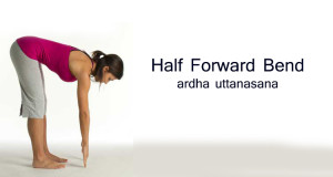 how to do Half Forward Bend - Ardha Uttanasana
