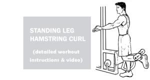 standing leg hamstring curl