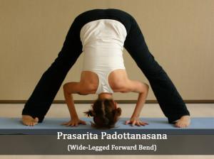 prasarita padottanasana yoga pose  workout trends
