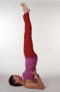 yoga_shoulder_stand