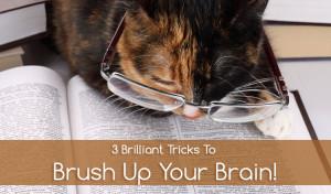 methods to sharpen your dull brain
