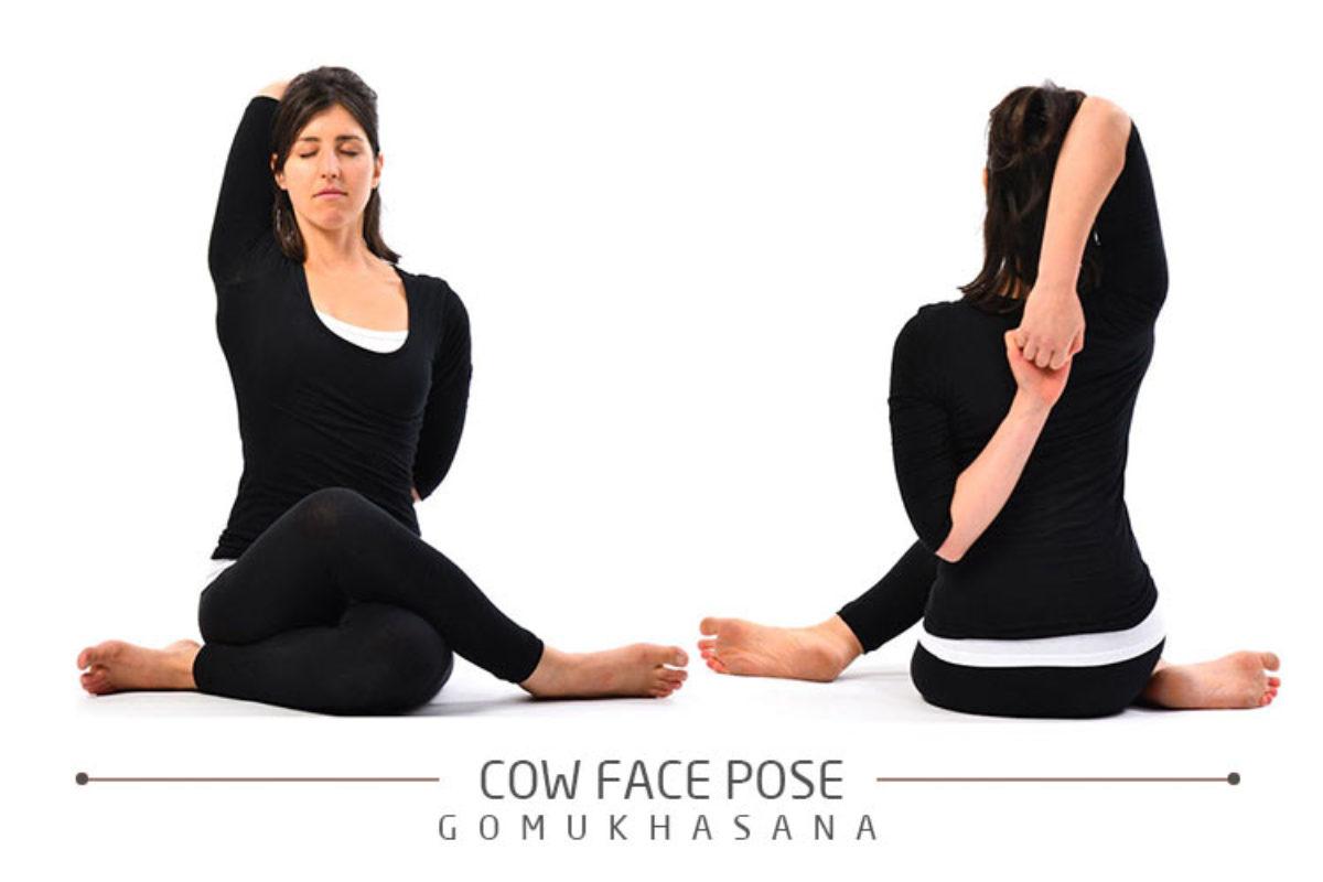 Gomukhasana Preparatory Poses