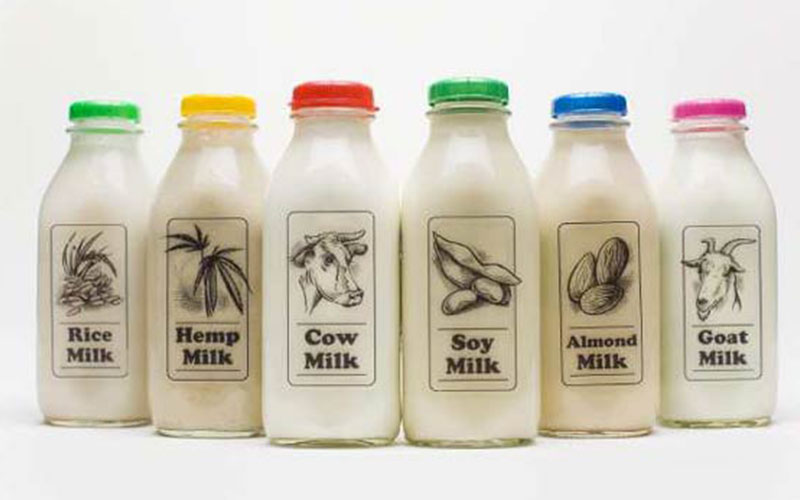 Healthy Milk Alternatives