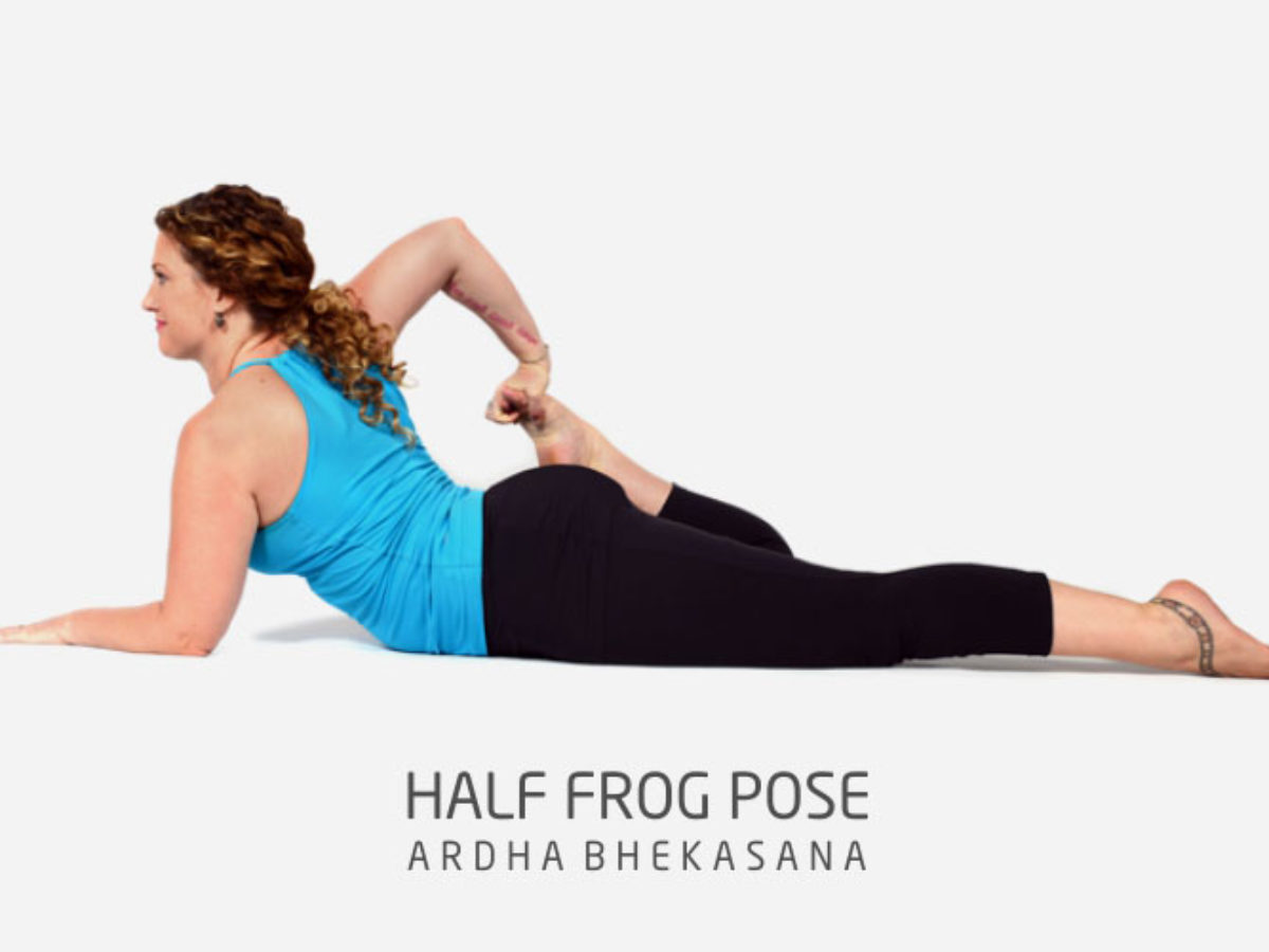 Half Frog Pose (Ardha Bhekasana)  Workout Trends