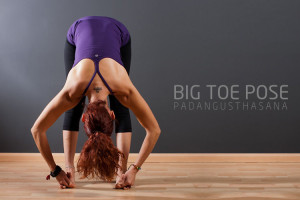 Big Toe Pose (Padangusthasana)