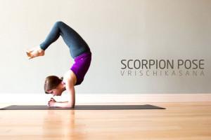 Scorpion Pose (Vrischikasana)