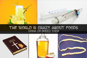 The world is crazy about foods