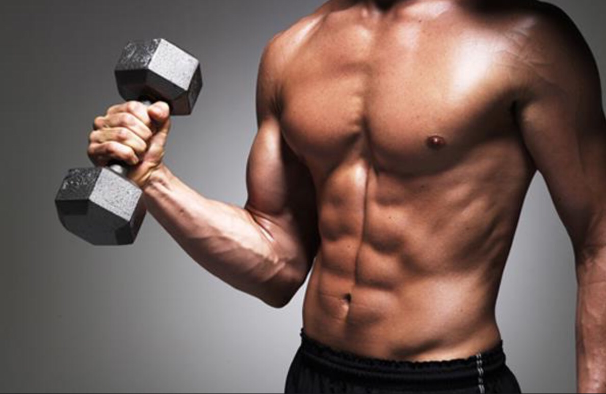 Ways to Effectively Avoid Catabolism and Build Muscle Mass